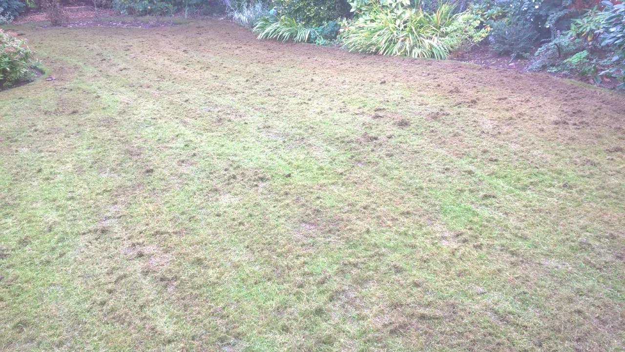 Seasonal Lawn Treatment Robathansgardens Co Uk